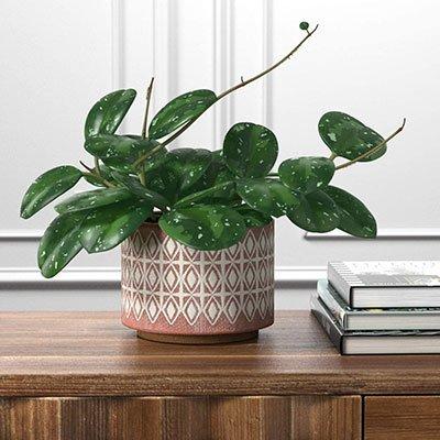 geometric-ceramic-planter-plant-pot
