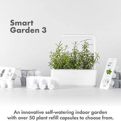smart-garden
